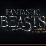 【予告動画ついに公開】ハリー・ポッターシリーズ新作映画『ファンタスティックビースト』【評判】