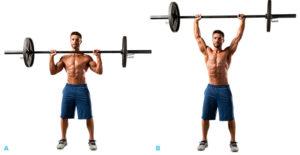 バーベルショルダープレス 典拠: bodybuilding.com