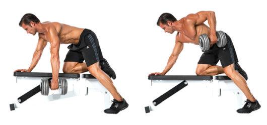 ワンアームロウ 典拠:bodybuilding-wizard.com